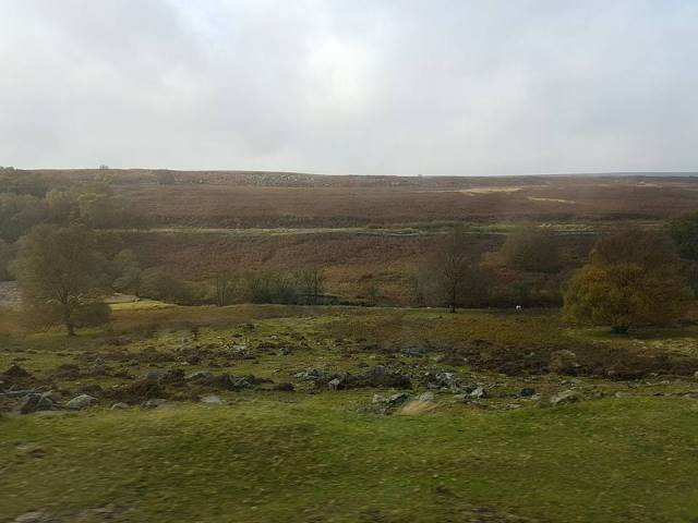 B1 Yorkshire Moors just outside Goathland