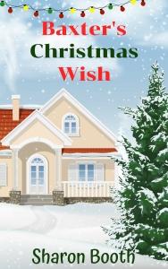 Baxter's Christmas Wish (3)